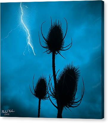 Lightning Spikes Canvas Print by Michael Rucker