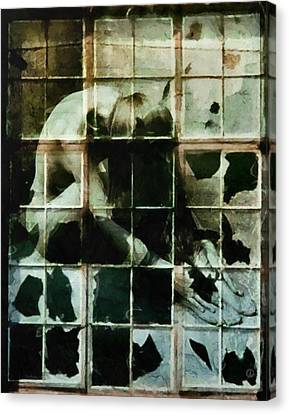 Like A Broken Window Canvas Print by Gun Legler