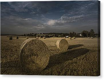 Like A Moonlight Shadow Canvas Print by Chris Fletcher