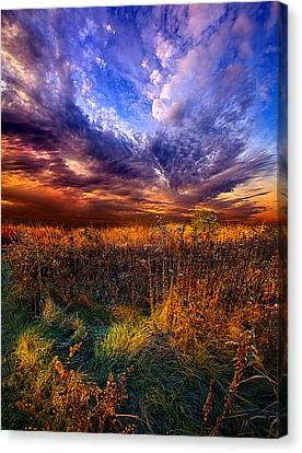 Like A Whisper In The Wind Canvas Print by Phil Koch