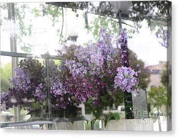 Lilacs Hanging Basket Window Reflection - Dreamy Lilacs Floral Art Canvas Print by Kathy Fornal