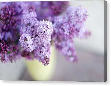 Lilacs In A Vase Canvas Print by Rebecca Cozart