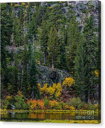 Lily Lake Autumn Canvas Print by Mitch Shindelbower