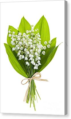 Lily-of-the-valley Bouquet Canvas Print by Elena Elisseeva