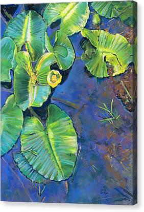 Lily Pads Canvas Print by Nick Payne