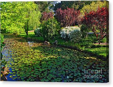 Lily Pond And Colorful Gardens Canvas Print by Kaye Menner