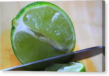 Lime Canvas Print by Dan Sproul