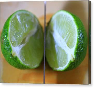 Lime Halves Canvas Print by Dan Sproul
