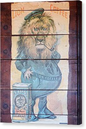 Lion Coffee Canvas Print by Susan Ince