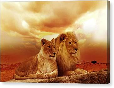 Lion Couple Without Frame Canvas Print by Christine Sponchia