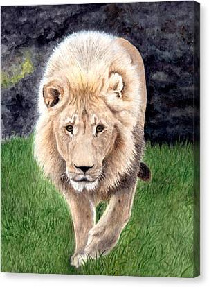Lion From Woodland Park Zoo Canvas Print by Inger Hutton