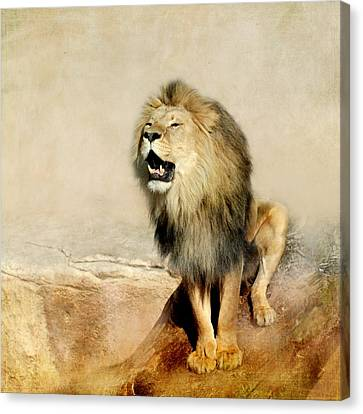 Lion Canvas Print by Heike Hultsch