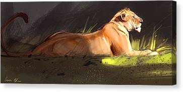 Lioness Sketch Canvas Print by Aaron Blaise