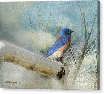 Little Blue Bird Canvas Print by Rhonda Strickland