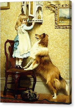 Little Girl And Her Sheltie Canvas Print by Charles Burton Barber
