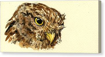 Little Owl Canvas Print by Juan  Bosco
