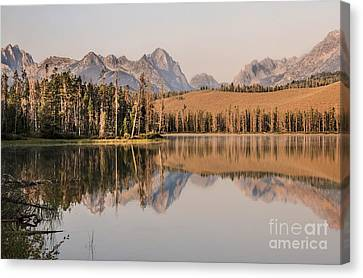 Little Redfish Lake Reflections Canvas Print by Robert Bales