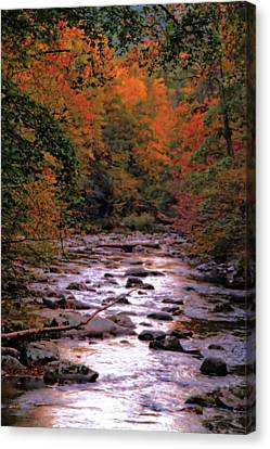 Little River In Autumn Canvas Print by Dan Sproul