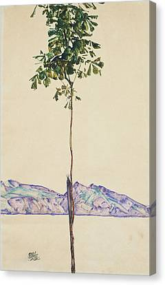Little Tree Canvas Print by Egon Schiele