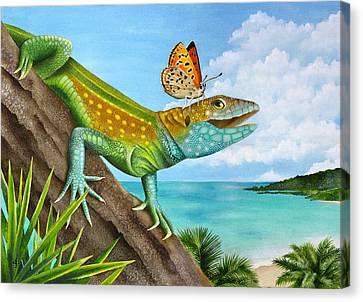 Lizard Landing Canvas Print by Carolyn Steele