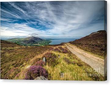 Llyn Peninsula Canvas Print by Adrian Evans