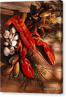 Lobster Clams And Mussels On Seaweed Canvas Print by Iris Richardson