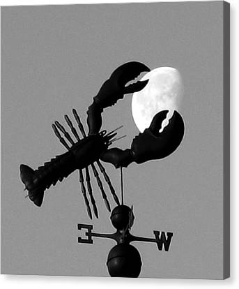 Lobster Over The Moon Canvas Print by Donnie Freeman