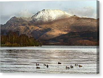 Loch Lomond Canvas Print by Trevor Sollars