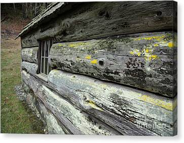 Log Cabin Side Canvas Print by Graham Foulkes