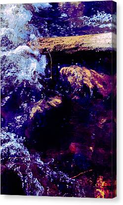 Log In River Canvas Print by Nicole Swanger