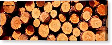 Logs Canvas Print by Panoramic Images