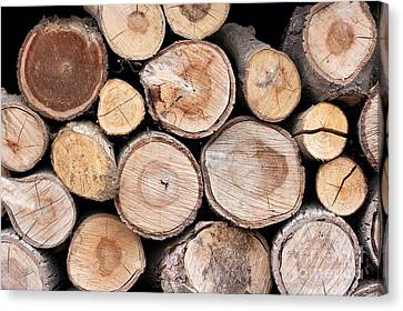 Logs Canvas Print by Peter Gudella