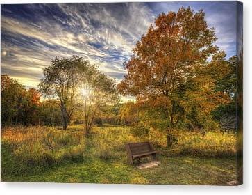 Lone Bench Under Tree - Fall Sunset - Retzer Nature Center - Waukesha Wisconsin Canvas Print by Jennifer Rondinelli Reilly - Fine Art Photography