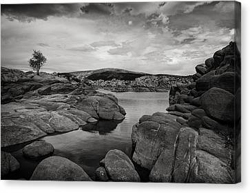Lone Tree And Watson Lake Canvas Print by Jesse Castellano