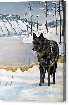 Lone Wolf Canvas Print by Harriet Peck Taylor