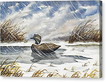 Lonely Decoy In Snow Canvas Print by Raymond Edmonds
