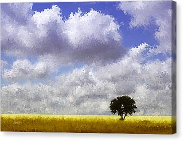 Lonely On The Prairie Canvas Print by Ann Powell