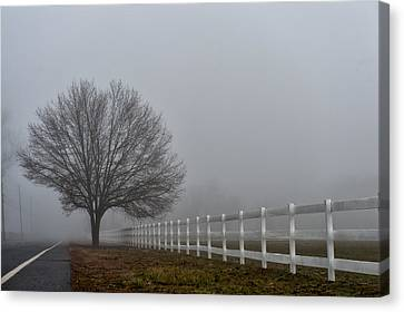 Lonely Tree Canvas Print by Louis Dallara