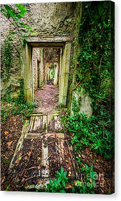 Long Forgotten Canvas Print by Adrian Evans