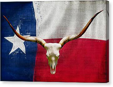 Longhorn Of Texas 2 Canvas Print by Jack Zulli
