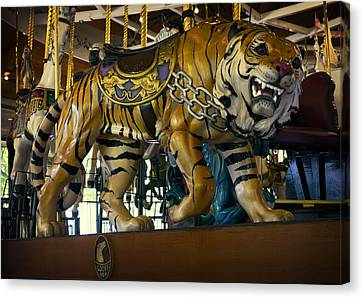 Looff Carousel Tiger 2 Canvas Print by Daniel Hagerman
