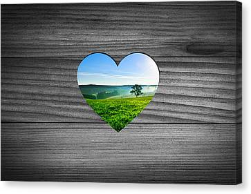 Look Into Nature Canvas Print by Aged Pixel