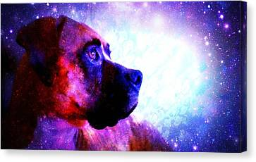 Look To The Stars Canvas Print by Kaylee Vergilio