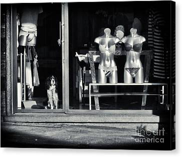 Looking Out The Shoppe Canvas Print by Silvia Ganora