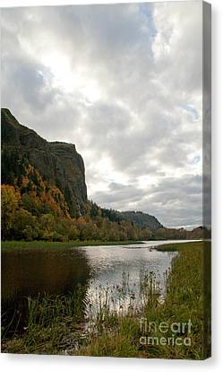 Looking Up At Crown Point Canvas Print by Cari Gesch