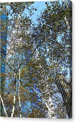 Looking Up From Bryant Park In Autumn Canvas Print by Sarah Loft