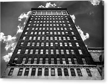 Looking Up Canvas Print by Lee Wellman