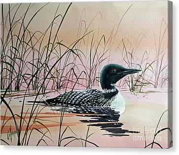 Loon Sunset Canvas Print by James Williamson