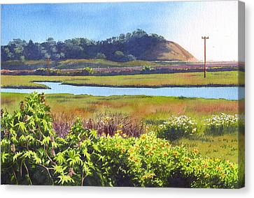 Los Penasquitos Creek Torrey Pines Canvas Print by Mary Helmreich