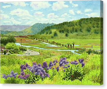 Los Penasquitos Looking East Canvas Print by Mary Helmreich